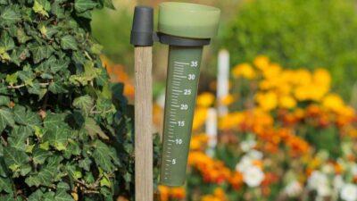 7 razones para usar pluviómetro si tienes un huerto en casa